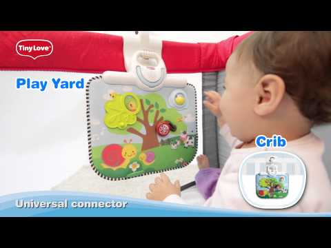 Double-Sided Crib Toy